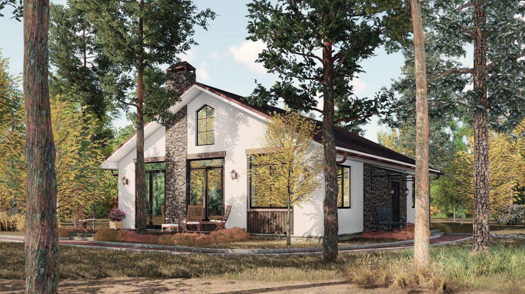 Одноэтажный дом в лесу